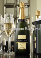 Chandon Sparkling Brut